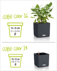 cube-color-sys-25.jpg